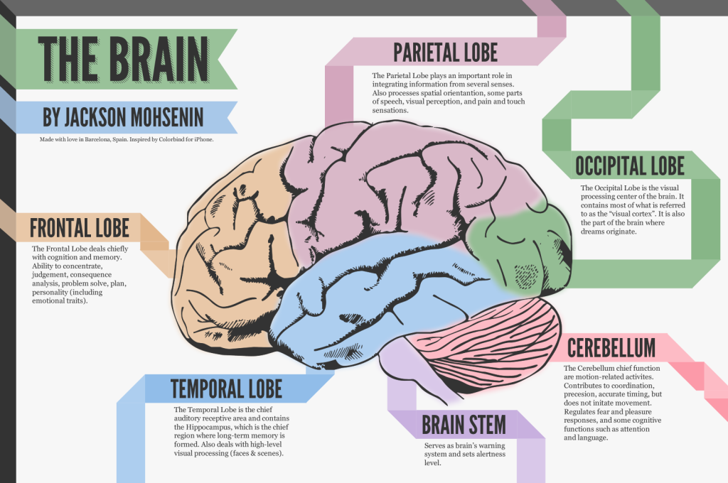 Infographics tools and its power!