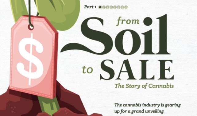 Cannabis: Using infographics to explain controversial subjects