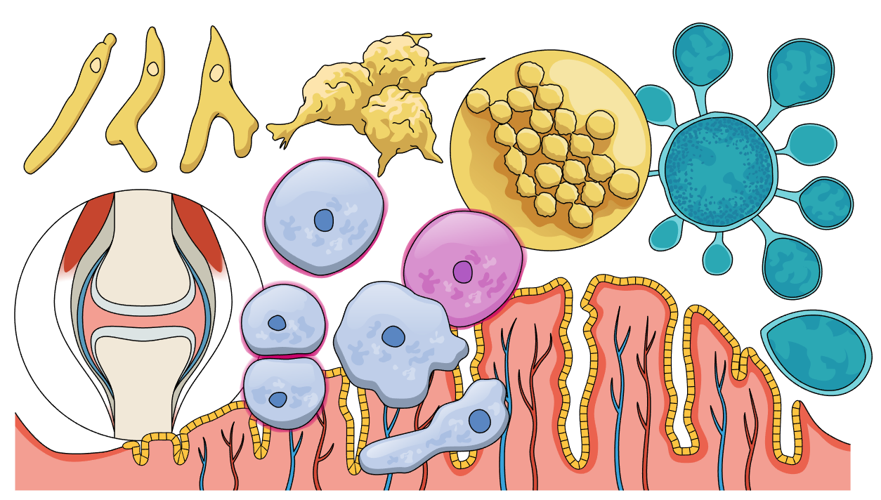 #1 Scientific illustrations of the week: What is new for you