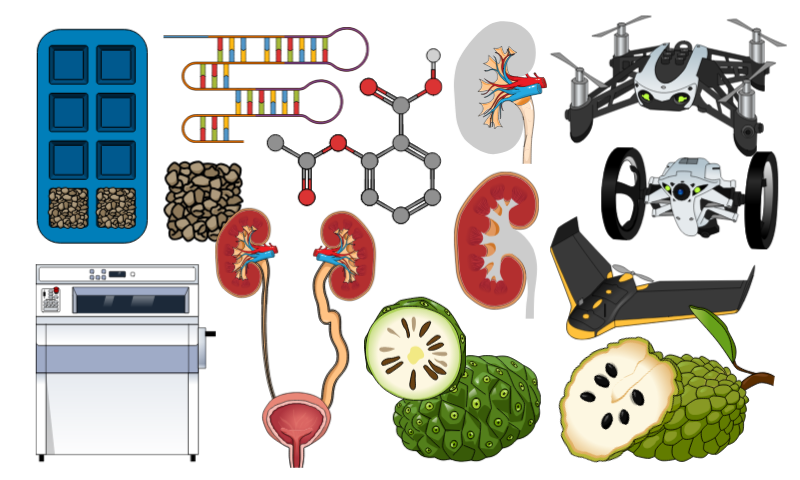 #6 Scientific illustrations of the week: What is new for you – Mind The Graph