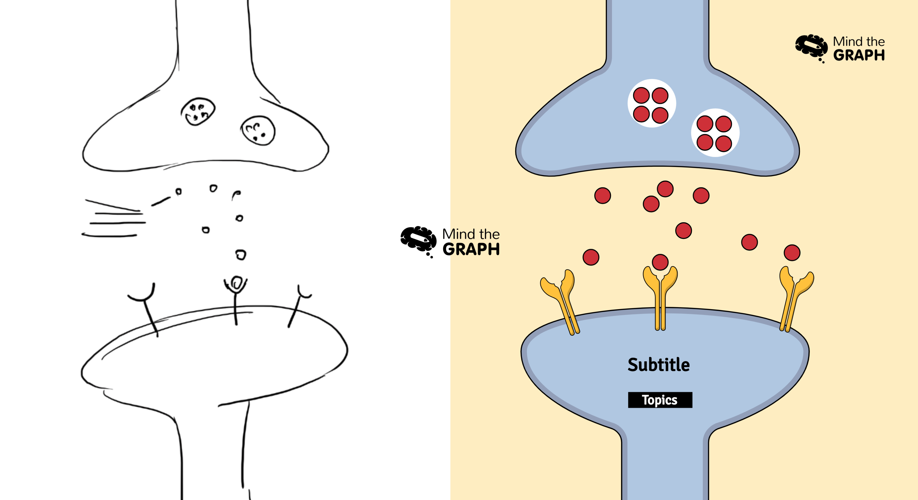 How to plan and design a graphical abstract in three steps