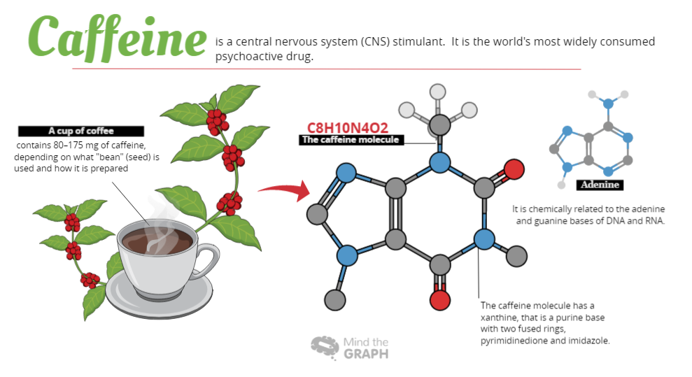 Caffeine: The science behind coffee