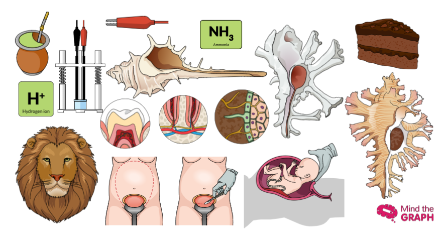 #26 The best scientific illustrations of the week: Don't miss it!