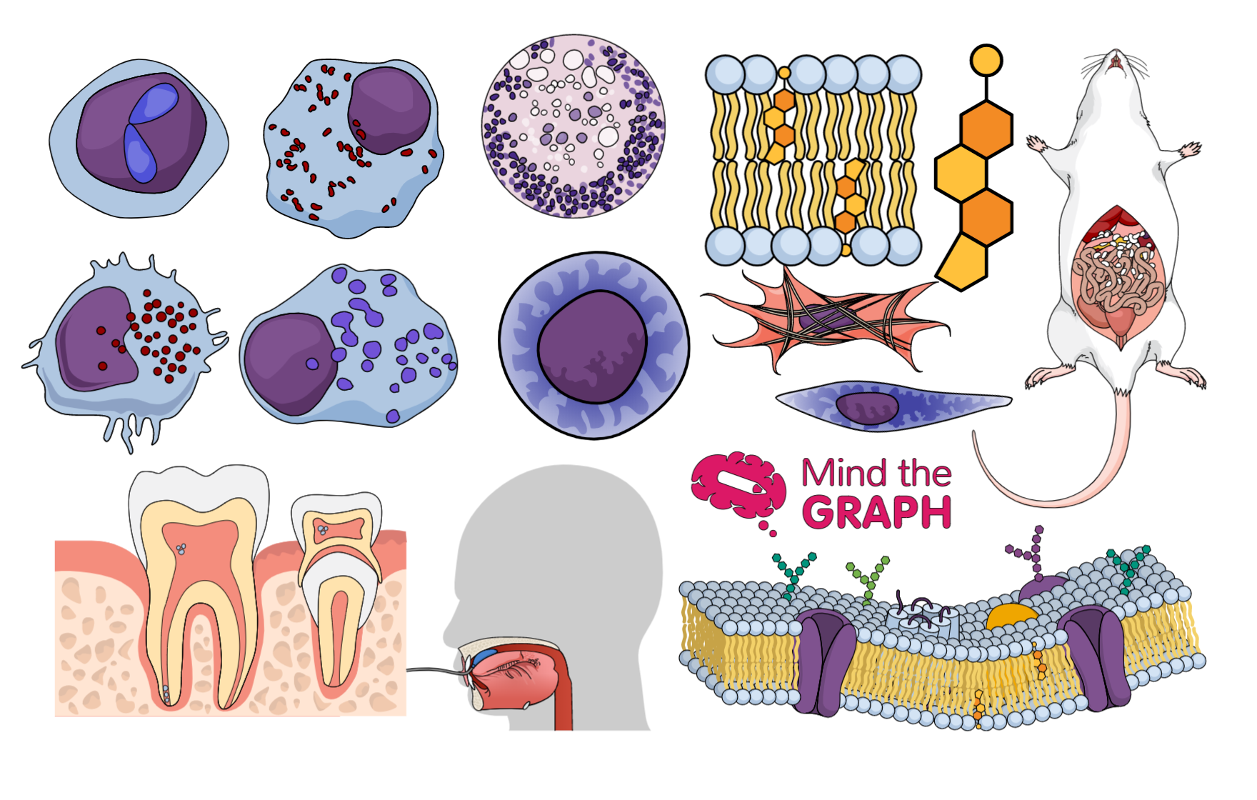 #30 The best of life science illustrations