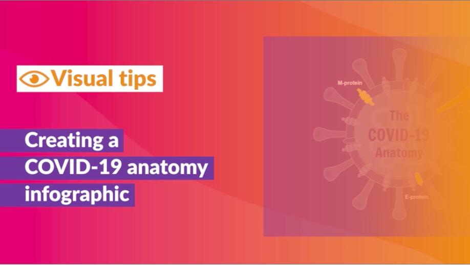 Tutorial video: coronavirus Covid-19 anatomy infographic