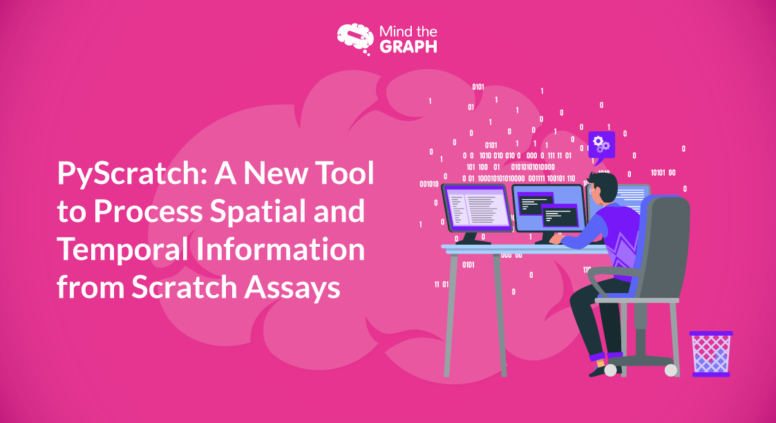 PyScratch: A New Tool to Process Spatial and Temporal Information from Scratch Assays