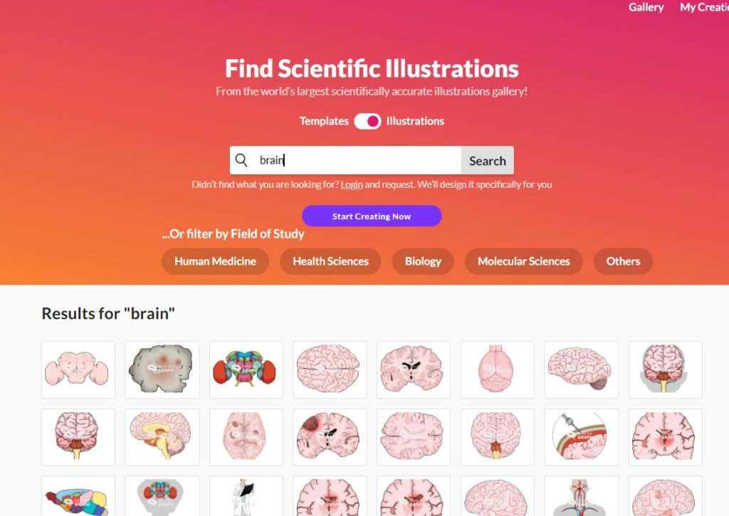 Brain illustrations from the Mind the Graph gallery