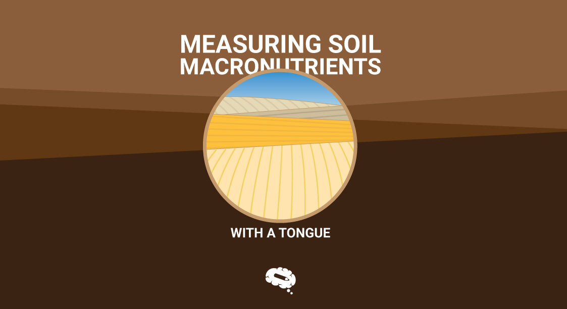 Measuring Soil Macronutrients With a Tongue