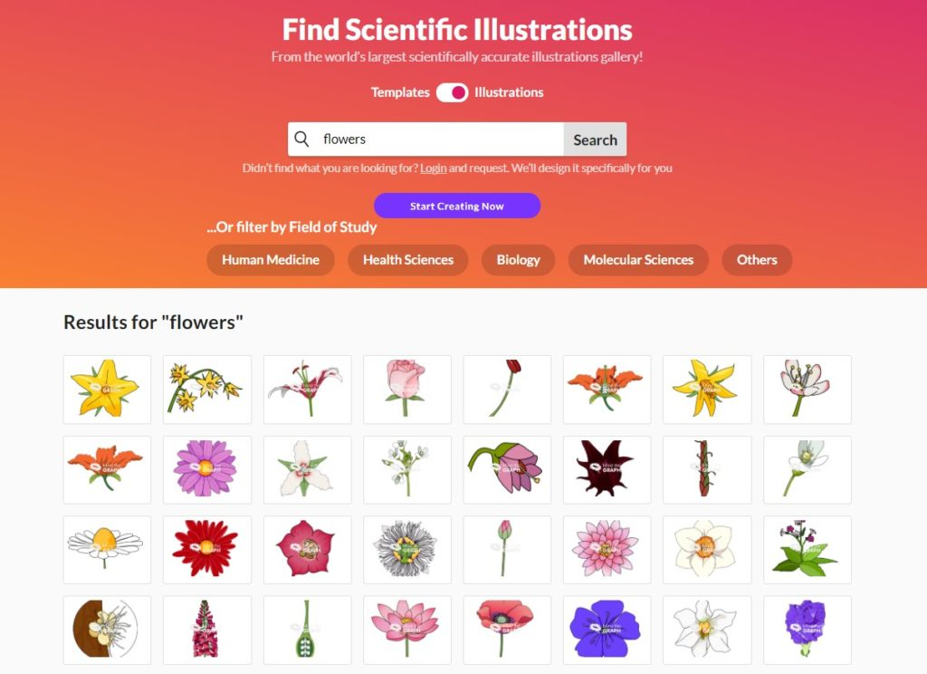 """Research in Mind the Graph Gallery for """"flowers""""."""