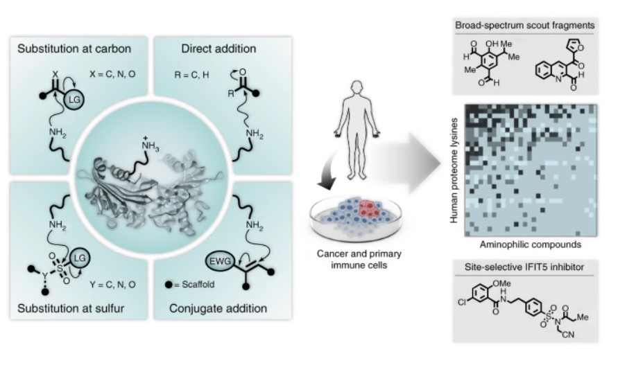 Graphical Abstracts from Nature Chemistry